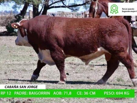 ORDEN 9 RP12 - CABAÑA SAN JORGE