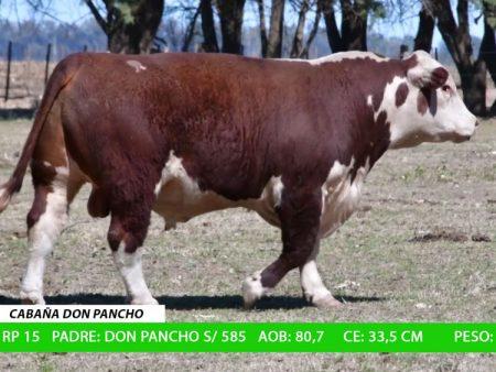 ORDEN 11 RP15 - CABAÑA DON PANCHO